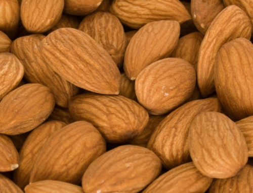 Eat These Foods for a Healthy Immune System